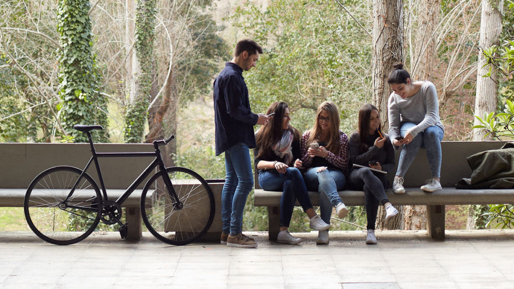 Students talking and sharing notes on a park bench.